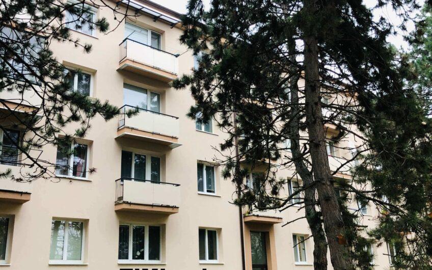 Prenájom veľkého 5-izb. bytu s 2 balkónmi pri veľkom parku